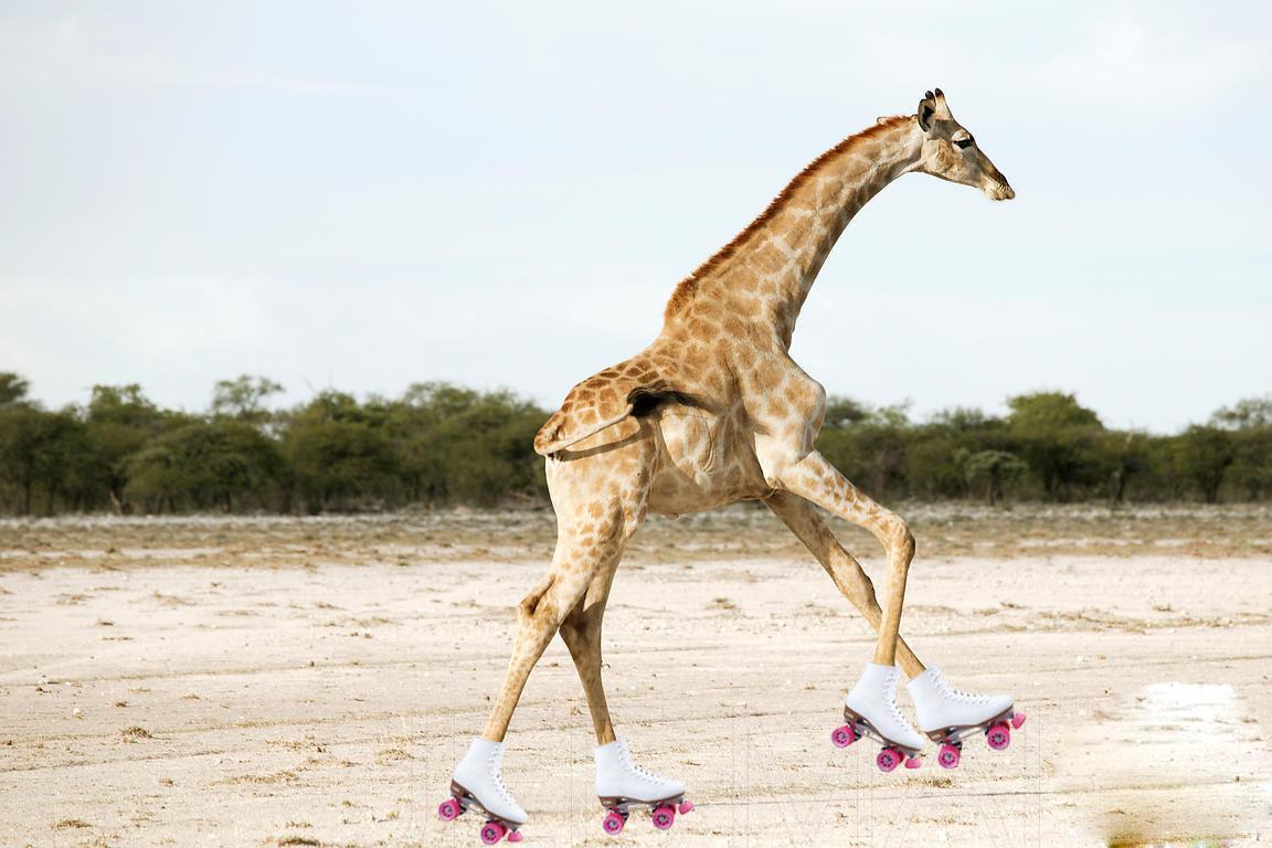 running giraffe drawing giraffe vector free download giraffe vector art for vinyl cutting